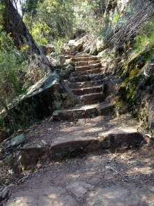 Stone steps to Paradise Falls